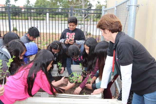 "<a href=""http://www.rioschools.org/projects/rio-learning-gardens/"">The Learning Garden</a>"